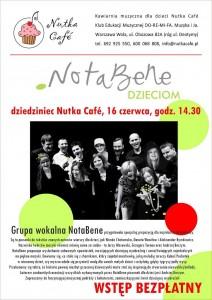 20130616_plakat